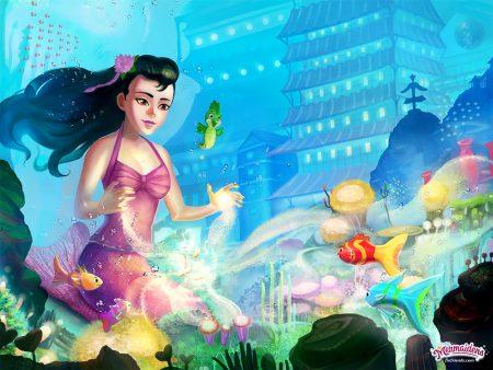 #3. Jia's Treasure