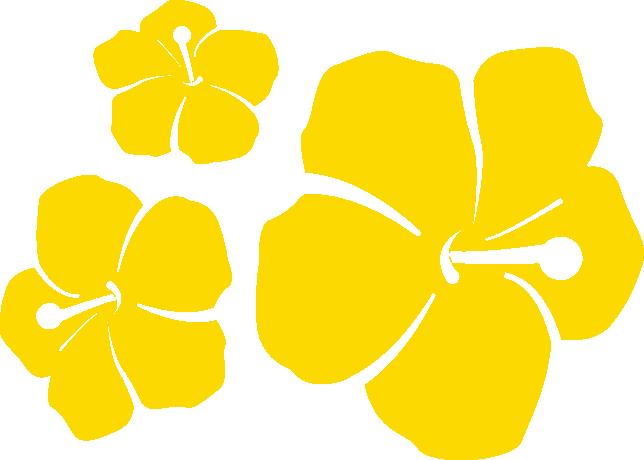 serena-flowers