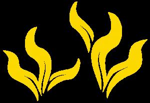 serena-plants