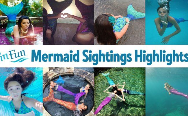 Mermaid Tail Videos – Fan Highlight Reel